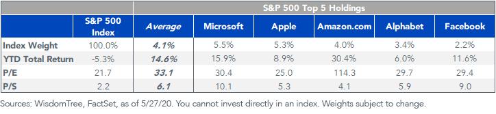 Figure 5_sp 500 companies top holding