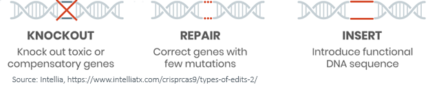 Figure 1_DNA sequences