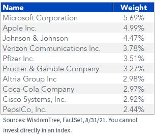 Figure 6_Top 10 Holdings WTDGI